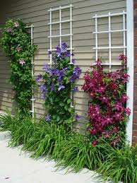 Small Picture garden design garden ideas Creepers Architecture Pinterest