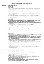 Vp Resume Examples VP Brand Resume Samples Velvet Jobs 8