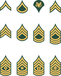 Army Nco Ranks Chart Army Officer Rank Insignia Clipart Images Gallery For Free