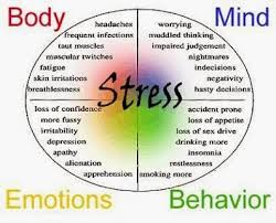 My Wisdom Board Blog Stress Relief And Management