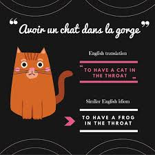 best all about language and translation images learn some french idioms idiomslanguage