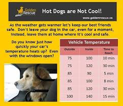 Pet Pantry Provisions Heat Stroke