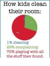 Funny Pie Chart Kids Cleaning Room Funny Memes Funny