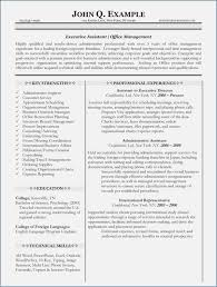Resume How Many Pages Inspiration 9814 How Many Pages Should A Resume Be For It Professionals Fluentlyme