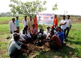 tree plantation drive santulan initiatives engaging communities to plant trees tree plantation drive at sihor m p by bhopal 2013