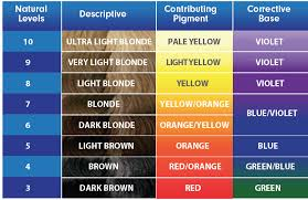 Brown Color Chart Wheel Color Correcting Toner Chart In 2019 Hair Color Wheel