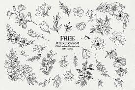 Free Wild Blossom Hand Sketched Floral Botanical Elements