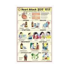 Heart Attack Chart Heart Attack Charts Bep Edu World Exporter In Kondhwa