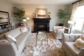 Living Room Area Rugs Ideas