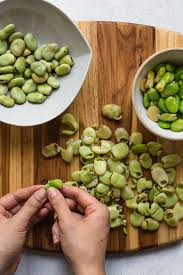 fava bean dip a simple vegan dip that is great as a snack spread