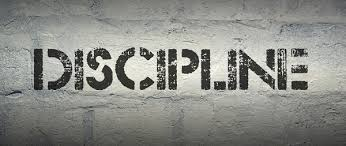 discipline essay essay and paragraph discipline essay