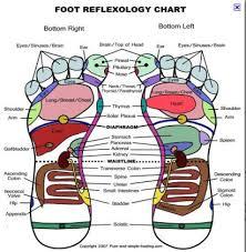 Eunice Ingham Reflexology Chart Pin On Reflex