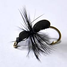 Image result for foam ant fly
