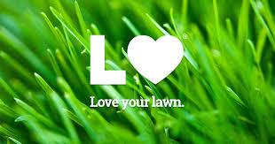winter garden lawn care mowing