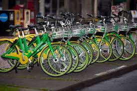 Image result for lime green bike images seattle
