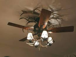 ceiling fan clearance. unique ceiling fans australia fan globes clearance image of antler with light ideas