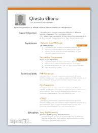 Curriculum Vitae Template Free Classy Professional Resume Templates Free Download Word Curriculum Vitae