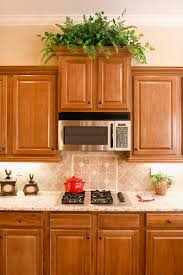 issues with over the stove microwave ovens hunker for can range be used on countertop inspirations