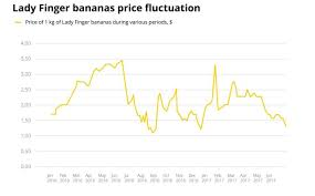 Banana Coin Price Chart Bananas Dont Make A Good Stablecoin
