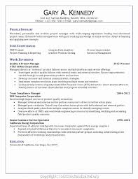 Functional Resume Pdf Key Competencies Of A Project Manager Pdf Functional Resume Choice