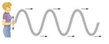 transverse and longitudinal waves venn diagram transverse and longitudinal waves review article khan