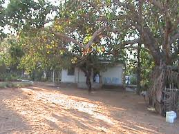 Image result for images of totapalli hills