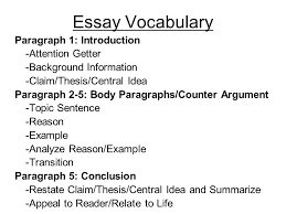 essay background info essay background info
