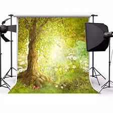 Laeacco Vinyl 5X5FT Photography Background Fairy ... - Amazon.com