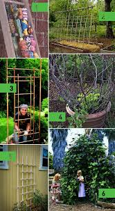 Small Picture Roundup 6 DIY Garden Trellis Ideas Curbly