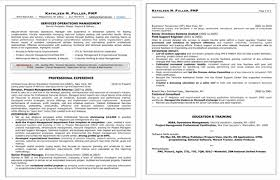 Professional Resume Beauteous Professional Resumes For Middle Upper Management Executive