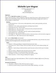 Resume Web Seo Consultant
