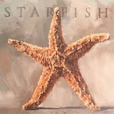 this starfish wall art is the perfect addition to your beachy decor