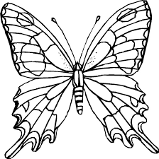 Small Picture Printable Butterfly Coloring Pages Coloring Me Coloring Pages Of