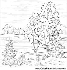 landscape coloring page 16 colorpagesfors coloring
