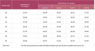 Cup Size Chart Inches 17 Extraordinary Bra And Cup Size Chart