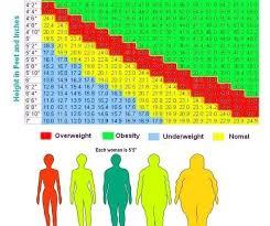 Obesity Chart For Women Spirit Fire Training Female Obesity