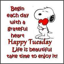 Tuesday Inspirational Quotes Simple Snoopy Inspirational Tuesday Quote Pictures Photos And Images For