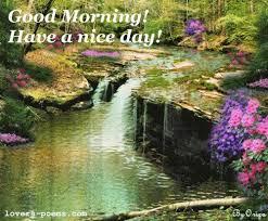 good morning scenery