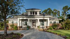 gorgeous house plans by sater design 6 collection at eplanscom