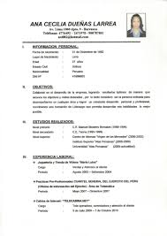 Definition Resume Resumes Definition Resume Work Vs Cv Application Pdf En Francais 10