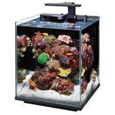 Azoo Aquarium Light Coralife Marine Aquarium Clip On Led Light Ad Aquarium