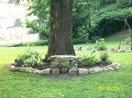 landscaping under trees landscaping under trees pictures landscaping around trees ideas best landscape around trees ideas