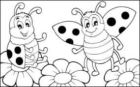 Small Picture ladybug coloring page 2 funnycrafts