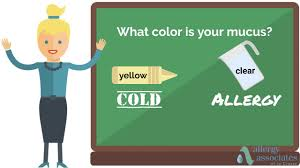 Is it a cold or is it an allergy?
