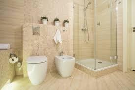 beauty of frameless glass shower enclosures