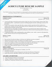 Lovely Resume Template Sales Resume Objective Examples Sales