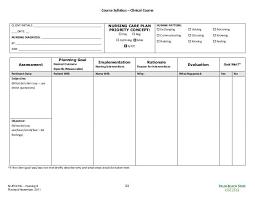 Blank Care Plan Forms Under Fontanacountryinn Com