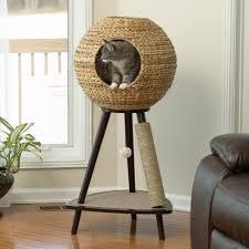 Modern Design Cat Furniture Best Cat Tree Without Carpet Ideas Cat Scratching Tree