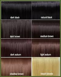 Astonishing Dark Auburn Hair Color Chart Best Natural