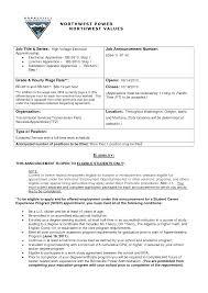 Master Electrician Resume Examples Of Electrician Resumes Ninjaturtletechrepairsco 14